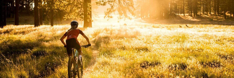 Bikerin im Lichtspiel des Waldes